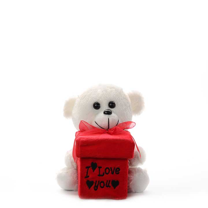 """I Love You"" Gift Box Teddy Bear"